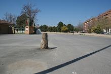 Huesca. Parte delantera Campin San Jorge. A la derecha, sombra del poste de la luz. En medio, resto del tronco talado.