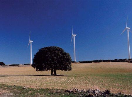 Parque eólico de La Muela